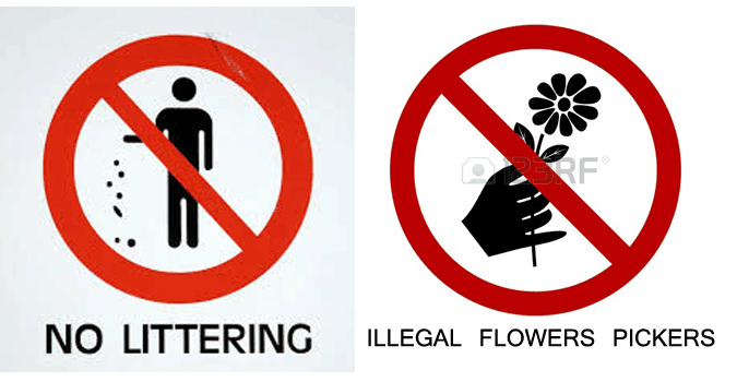 kuwait introduces hefty fines for picking flowers smoking